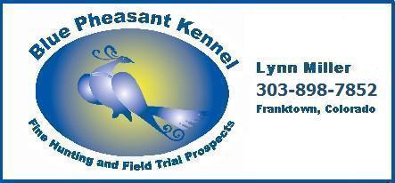 Blue Pheasant Kennel – Franktown, Colorado