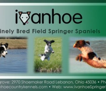 Ivanhoe Country Kennels – Lebannon, Ohio