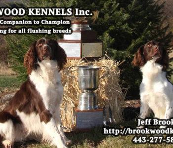 Brookwook Kennels – Glen Rock, Pennsylvania
