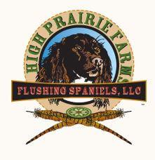 High Prairie Farms Flushing Spaniels – Carr, Colorado