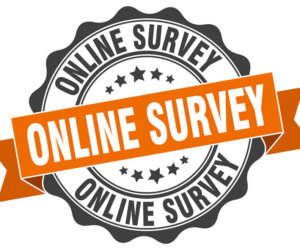 Nationals Dates Survey
