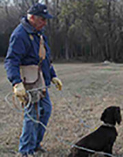 Spaniel Training Seminar with Ray Cacchio May 11-13, 2018
