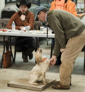 Gun Dog Seminar by Todd Agnew  March 6-8, 2020 in Mitchell, Georgia @ Craney Hill | Mitchell | Georgia | United States