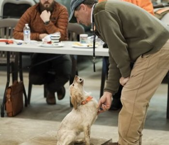 Gun Dog Seminar by Todd Agnew  March 6-8, 2020 in Mitchell, Georgia